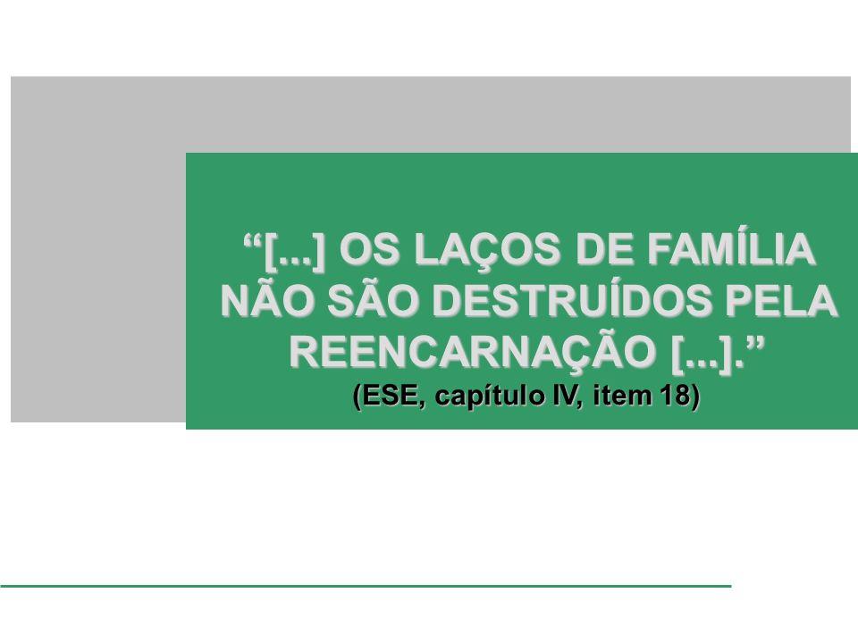 [...] OS LAÇOS DE FAMÍLIA NÃO SÃO DESTRUÍDOS PELA REENCARNAÇÃO [...].